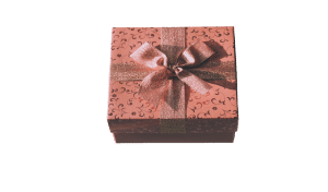 Embird-Basic-Program-2019-Plus-Digitizing-Tools-Plus-Sfumato-Stitch