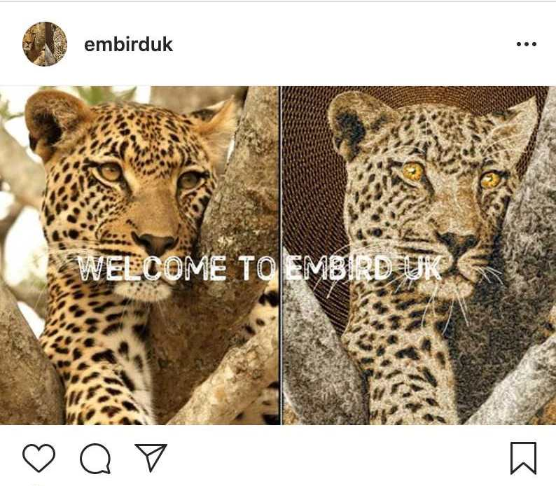 Embird UK Instagram